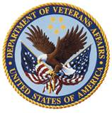 Managing innovation projects at the VA